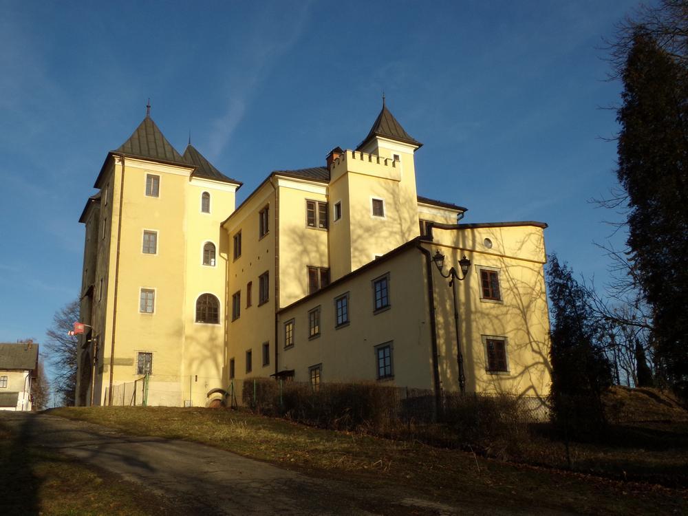 zamek-w-grodźcu
