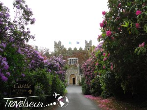 Europe - Ireland - Waterford Castle - (11)