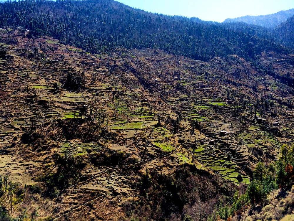 Jaunsar Babar Region.