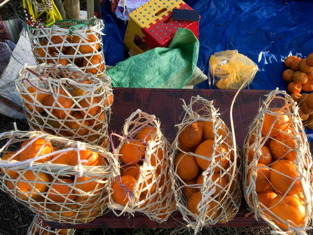 Orange Festival of Adventure & Music, Dambuk