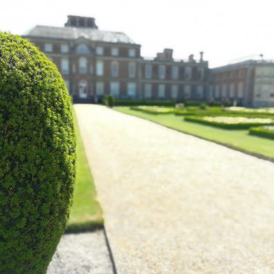 A view of the back of Wimpole Hall taken from partially behind a bush, with the background blurred