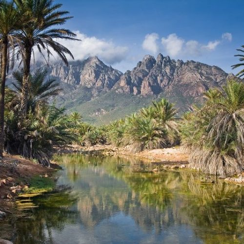 Green Valley | Socotra Island | Yemen