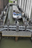 This time, there even was some action at the boat lift...