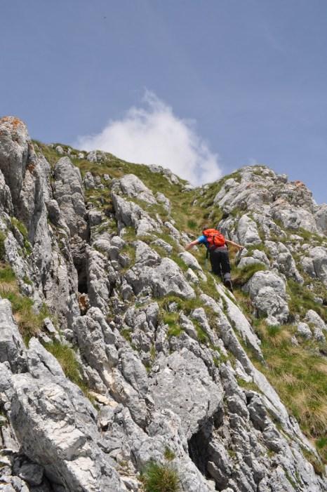 Sometimes it was a little steep.