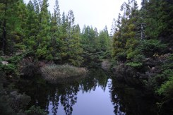 One of the pond of the Misterios Negros.
