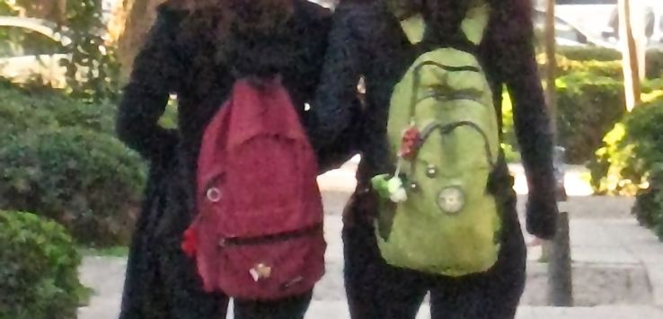 People of Istanbul-Girls walking to school