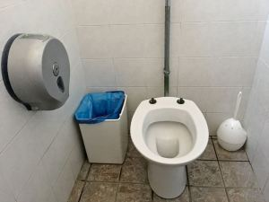 To flush or not to flush: If there's a bin, use it for the toilet paper.
