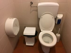 To flush or not to flush: This is the perfect toilet set-up. Don't expect to find it everywhere.