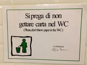 "To flush or not to flush: Even without the translation, you can read ""non"" and ""WC."" The drawing says it all."