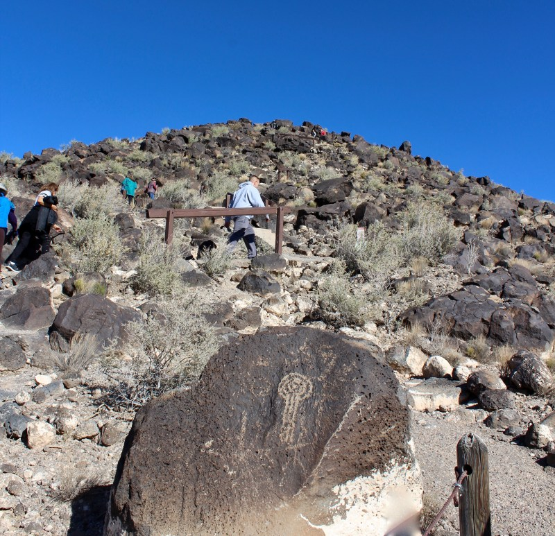 Petroglyph National Monument: climb to the top of Mesa Point Trail. It's 5,280 feet above sea level, with great views!