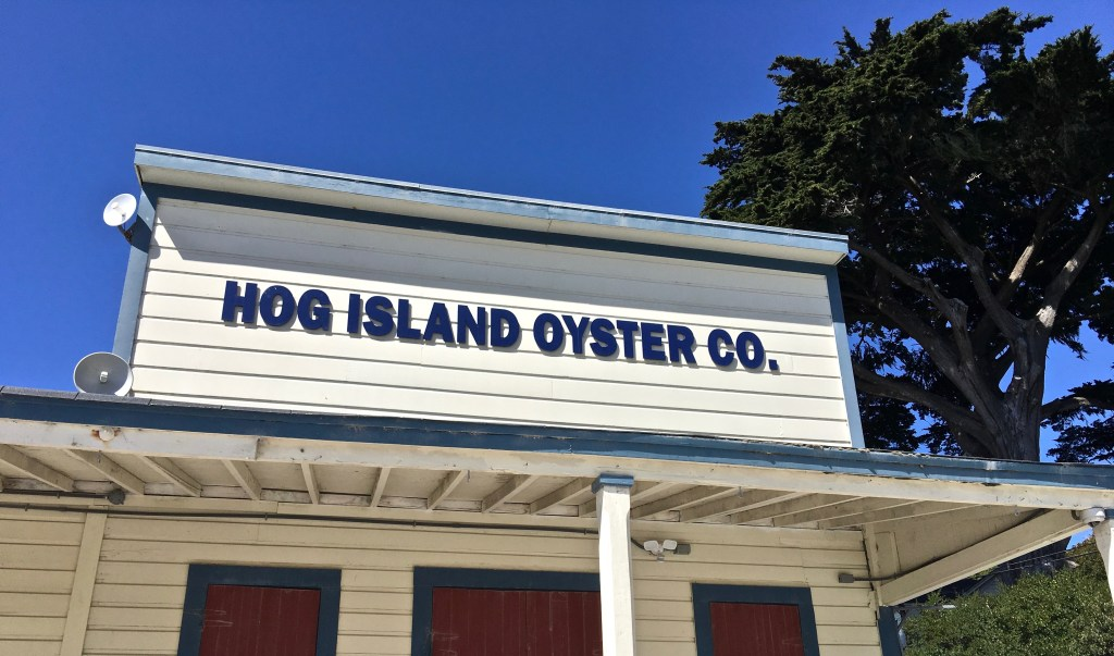 When you drive to Hog Island Oyster Company, you're sure that you must be lost. But have faith!