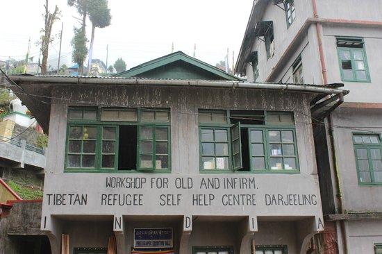 Image result for tibetan refugee centre darjeeling