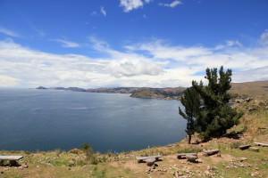 Bolivien_Westen_Lauca_002