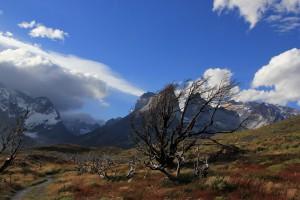 Chile_Patagonien_035
