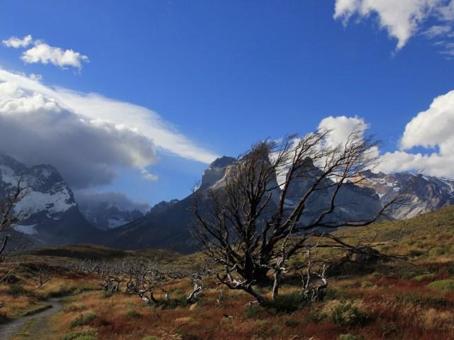 Feuerland und Nationalpark Torres del Paine