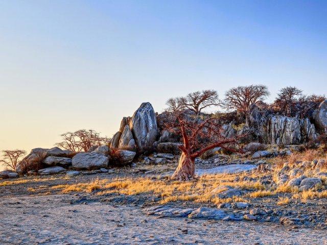 Botswana – Abenteuer in der Cental Kalahari und den Makgadikgadi Pans
