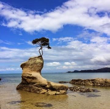 Abel Tasman - Itinerary Planner