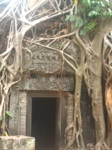 Ta Prohm, Angkor Wat Complex, Cambodia