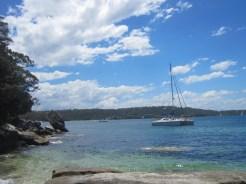 Shark Bay, Sydney NSW