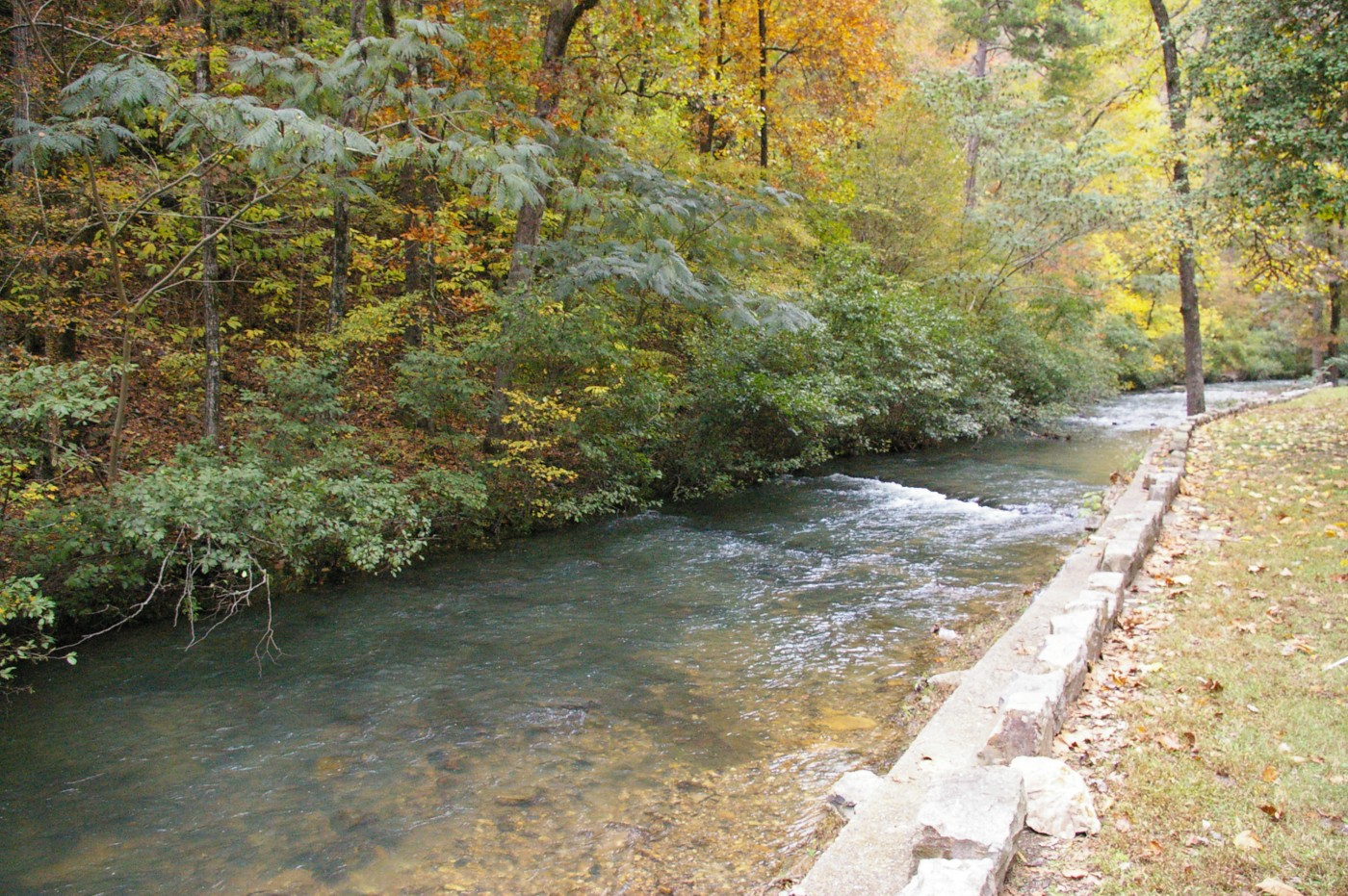 Hot Springs Arkansas Travel Squire