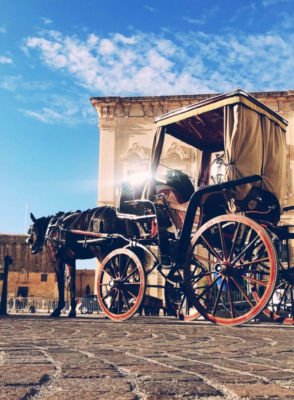Horse & carriage Valetta Malta