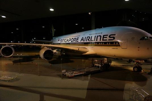 Singapore Airlines Suites Review