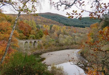 killiecrankie autumn big tree country