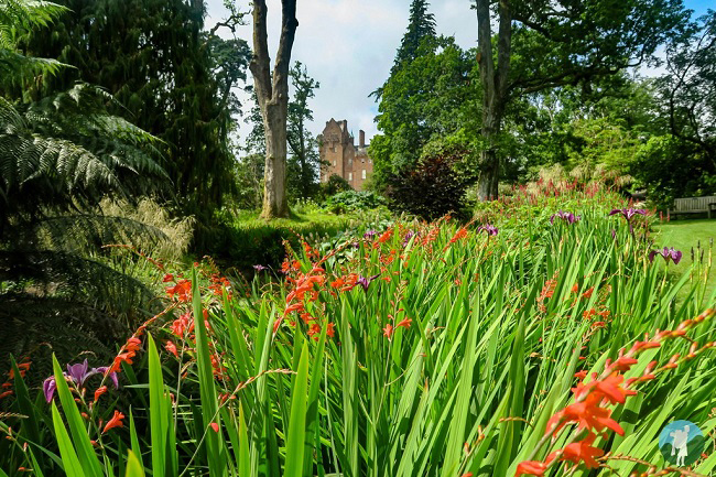 brodick castle gardens weekend activities arran