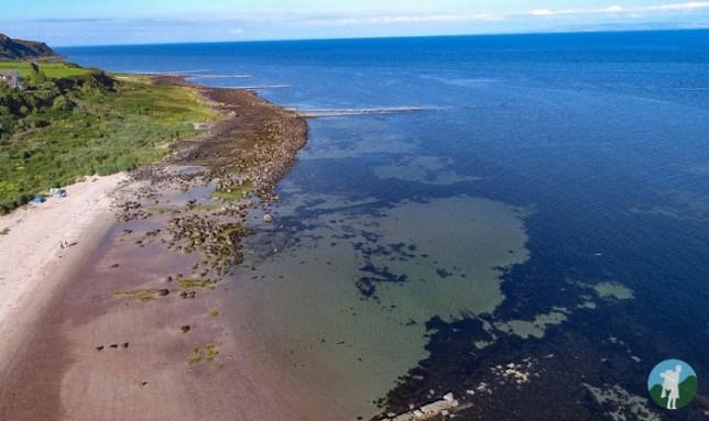 kildonan beach drone