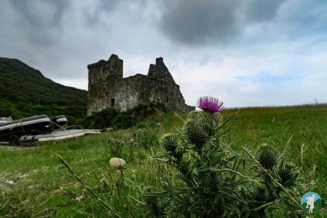 weekend activities arran lochranza castle