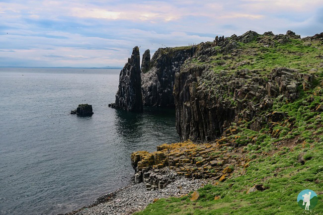 crags isle of may north berwick boat trips