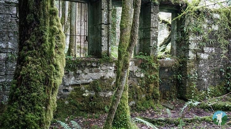 ruins buchanan castle scotland