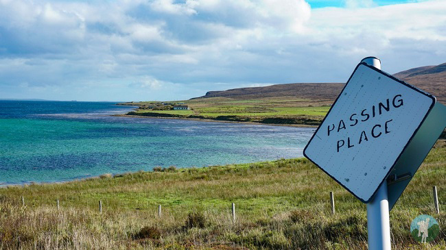 orkney day trips isle of hoy