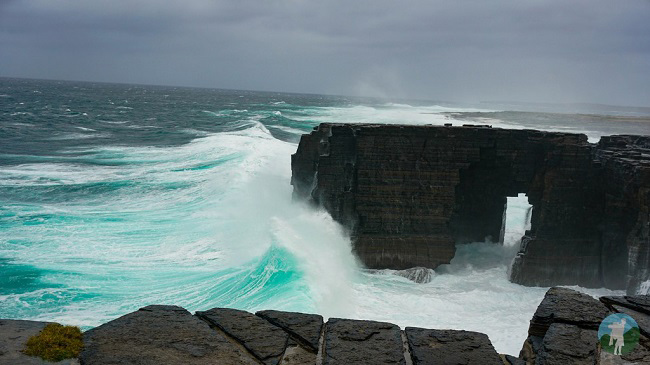 orkney day trips westray cliffs