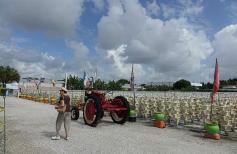 1.1435327259.the-pyo-fields