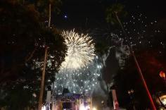 1.1436400629.frozen-firework
