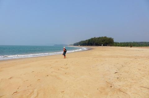 5.1454690071.1-turtle-beach