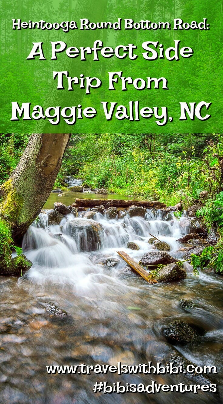 Heintooga Round Bottom Road: A Perfect Scenic Drive In Great Smoky Mountains National Park