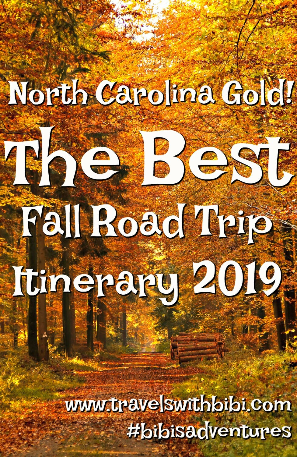 Fall Leaf Color Road Trip In Maggie Valley, North Carolina