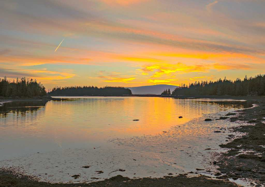 Acadia National Park in Bar Harbor, Maine Travels with Bibi