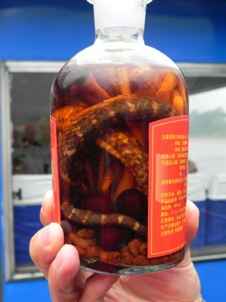 Guiling, Li River Cruise, snake wine