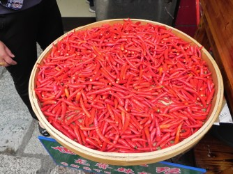 Guiling, Li River, Yangshou, Hor Chili Pepper