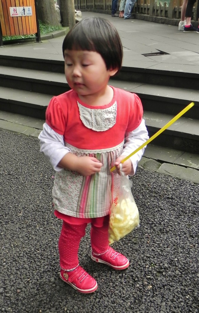 China, Chongqing, Zoo, child, girl