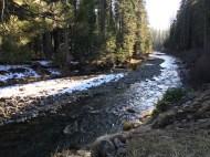 Near Butte Creek headwaters