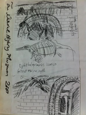 My sketches from London's Natural History Museum from my England Sketchbook.