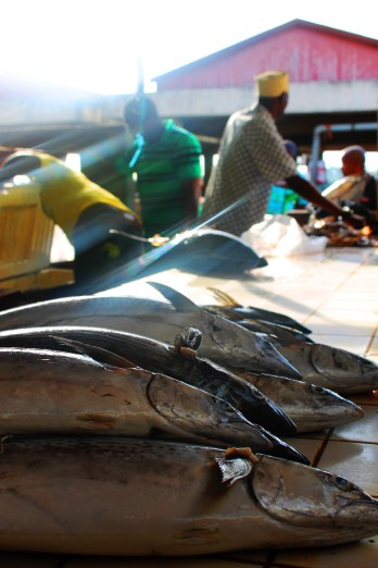 Early morning light at Kivukoni Fish Market in Dar Es Salaam