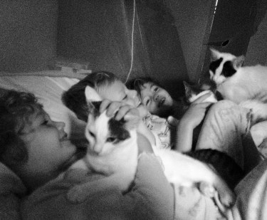 Three children with three kittens