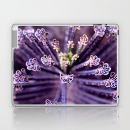 Purple Euphorbia in Detail - laptop and i-pad skin for Society6