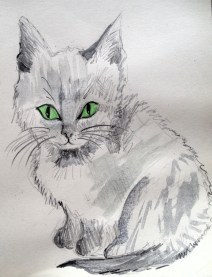 My watercolour sketch of our new kitten, Modraniht