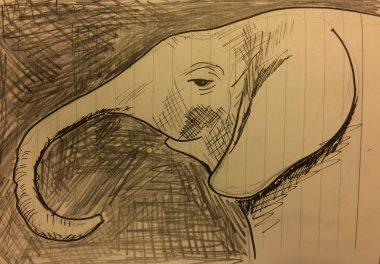 My sketch of a baby elephant at the David Sheldrick Wildlife Trust in Nairobi